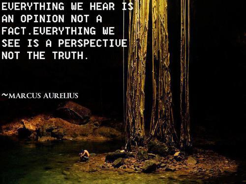 Everything We Hear Is An Opinion Not A Fact. Everything We