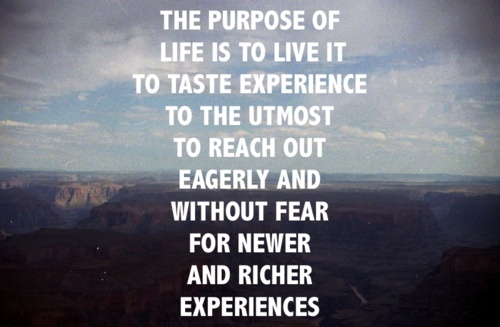 The Purpose Of Life Is To Live It To Taste Experience To The