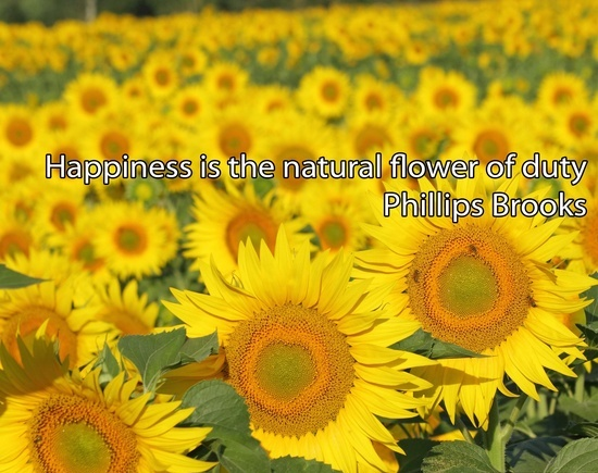Happiness is the natural flower of duty phillips brooks picture phillips brooks quotes images mightylinksfo Image collections