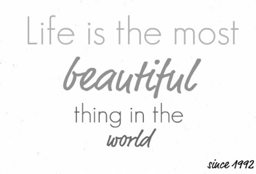 life is the most beautiful thing