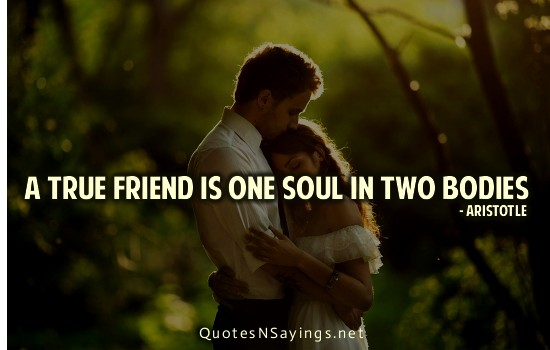 "essay on a friend is one soul in two bodies Florensky's ideal of friendship as constitutive of ""one soul in two bodies,"" making of a man i introduce conjugal friendship as a essay and the."