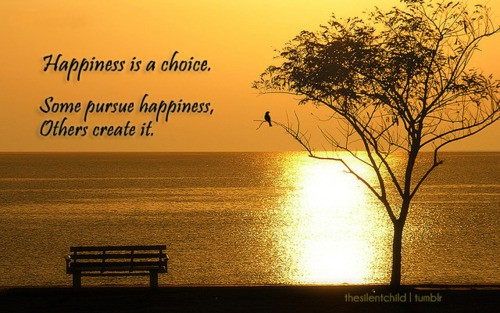 happiness is a choice some pursue happiness others it unknown