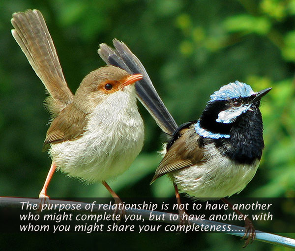 The Purpose Of Relationship Is Not To Have Another Who Might