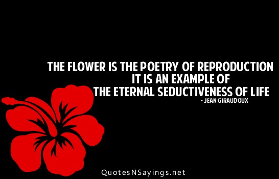 the flower is the poetry of reproduction it is an example of the
