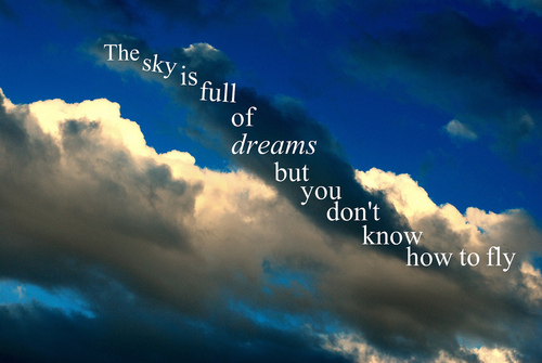 the sky is full of dreams but you don t know how to fly