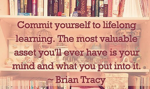Lifelong Learning Quotes Gorgeous Commit Yourself To Lifelong Learningthe Most Valuable Asset You