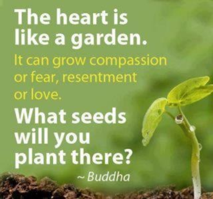 The Heart Is Like A Garden. It Can Grow Compassion Or Fear, Resentment Or  Love. What Seeds Will You Plant There?