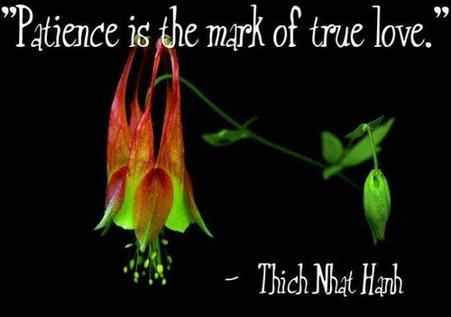 Patience is the mark of true love. | Thich Nhat Hanh Picture ...